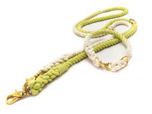 Tauleine & Tauhalsband Willow für Hunde - taukunst Manufaktur