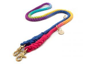 Tauleine Rainbow für Hunde - taukunst Manufaktur